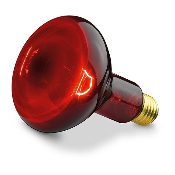 Beurer BEU-INFRA100W žiarovka pre infračervenú lampu IL11 100 W